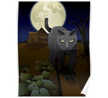 Cat on fence Poster