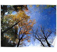 Autumn Skyscape Poster