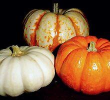 Gourds! by Danielle Morin