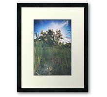 Beyond the Grass Framed Print