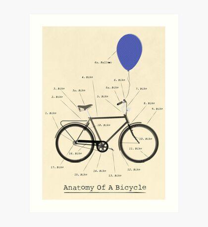 Anatomy Of A Bicycle Art Print