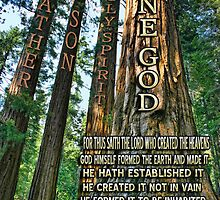 ✿♥‿♥✿ NATURE - TREES OF KNOWLEDGE-HOW THIS SPOKE TO ME-SCRIPTURE CARD/PICTURE✿♥‿♥✿ by ✿✿ Bonita ✿✿ ђєℓℓσ