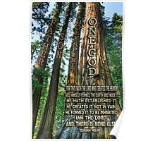 ✿♥‿♥✿ NATURE - TREES OF KNOWLEDGE-HOW THIS SPOKE TO ME-SCRIPTURE CARD/PICTURE✿♥‿♥✿ Poster