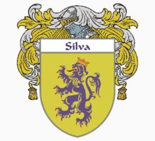 Silva Coat of Arms/Family Crest Kids Clothes