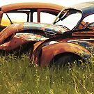 Automobile Graveyard No 1 by Barry W  King