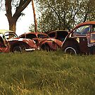 Automobile Graveyard No 4 by Barry W  King