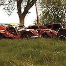 Automobile Graveyard No 6 by Barry W  King