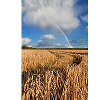 Rainbow over wheat field Photographic Print