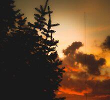Sunset in Washington state by va103