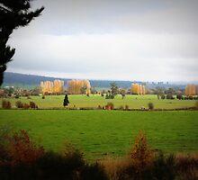 Farmlands From the Lyell Hwy Tasmania by suburbanjubilee