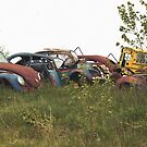 Automobile Graveyard No 10 by Barry W  King