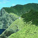 The Lighhouse at Cape Brett........! by Roy  Massicks