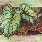 Caladiums 1 by Deborah Younglao