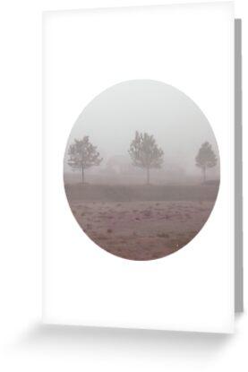 Foggy morning by careball