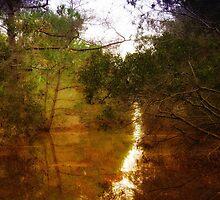 Beautiful Canal by virginian