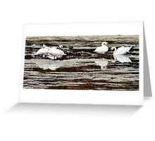 Fab Four by Elisabeth and Barry King™ Greeting Card