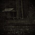 Cabin in the Woods by Ann Eldridge