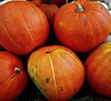 I love Autumn by Scott Mitchell