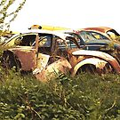 Automobile Graveyard No 12 by Barry W  King