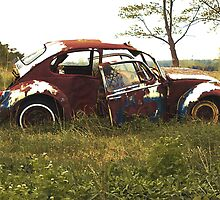 Automobile Graveyard No 14 by Barry W  King