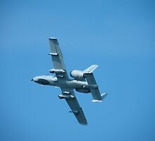 A-10 Flyby by 319media