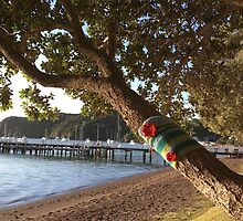North Island NZ - Yarn Bomb Tree by soulimages