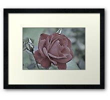 Inexorably Yours Framed Print
