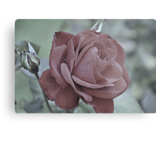 Inexorably Yours Metal Print