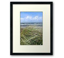 Kerry dune grass Framed Print