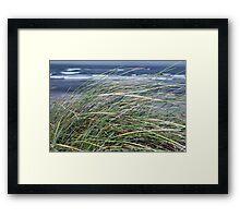 Kerry Ireland beale dune grass Framed Print