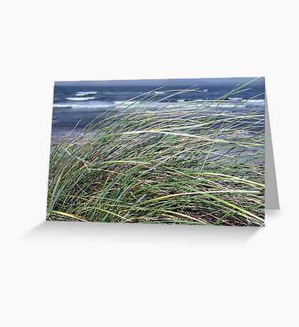 Kerry Ireland beale dune grass Greeting Card