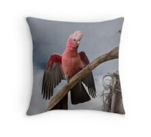 Gallah/Rose Breasted Cockatoo in Palm Tree Throw Pillow