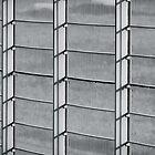 Flickerig Fence by Oliver Koch