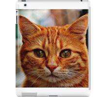Close Up Ginger Cat iPad Case/Skin