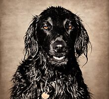 Well You Did Ask For My Best Portrait Smile by Susie Peek