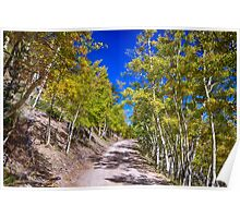 Back Country Road Take Me Home Colorado Poster