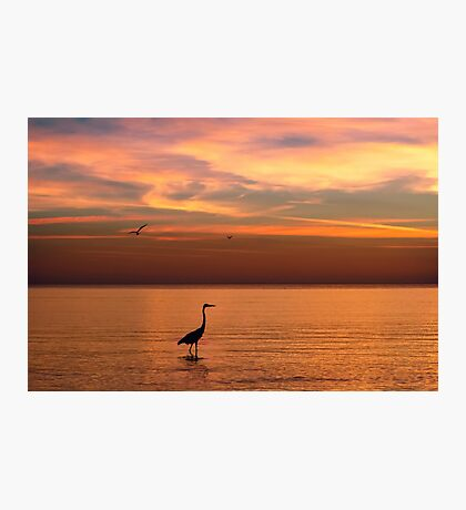 Ocean View at Sunset  Photographic Print