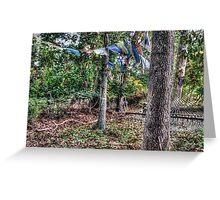Autumn Hammock With Prayer Flags Greeting Card