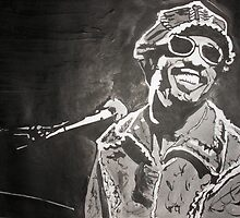 Stevie Wonder by Colin  Laing