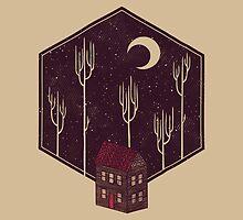 Still Night by Hector Mansilla