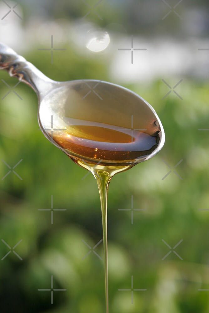 A Silver Spoonful of Honey by MarkYoung