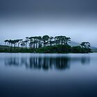 A Moment Of Calm by Alan Owens