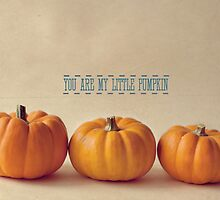 You Are My Little Pumpkin by Nicola  Pearson