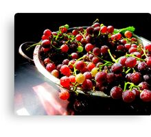 Just Harvested and Washed Canvas Print