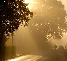 Early One October's Morning .. by Mike  Waldron