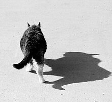 Big Cat Ferocious Shadow Monochrome by Bo Insogna