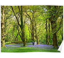 Never too old - to play amongst bluebells! Poster