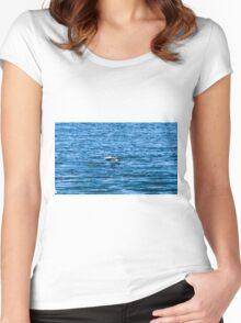Pelican  in Flight Women's Fitted Scoop T-Shirt