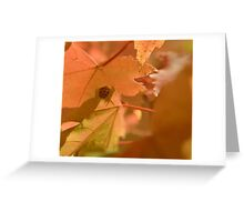 Ladybug on a Maple Leaf Greeting Card