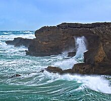 Storm waves at Thunder Point by Roger Neal